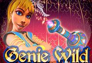 Genie Wild играть бесплатно