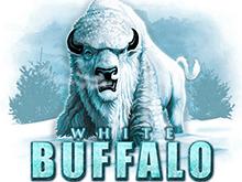 Автомат на деньги White Buffalo